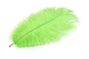 24 Pieces Green Ostrich Feather Plumes 15cm - 20cm Long - 17 Colours Available