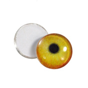 10mm Orange Yellow Flmaingo Glass Eyes Doll Irises for Art Polymer Clay Taxidermy Sculptures or Jewellery Making Set of 2
