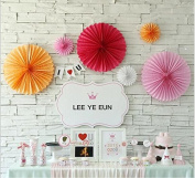 Sorive Pack of 6 Wedding Decoration Crafts Decorative Fold Tissue Paper Fan Flower Wedding Garland Party Hanging Decoration