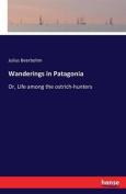 Wanderings in Patagonia