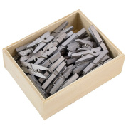 JAM Paper® Wood Clothing Pin Clips - Small (2.2cm ) - Silver - 50/Box