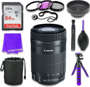 Canon EF-S 55-250mm f/4-5.6 IS STM Lens for Canon DSLR Cameras & SanDisk 64GB Class 10 Memory Card + Complete Accessory Kit