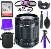 Canon EF-S 18–55mm f/3.5–5.6 IS STM Lens (White Box, Bulk Packaging) for Canon DSLR Cameras & SanDisk 64GB Class 10 Memory Card + Complete Accessory Kit