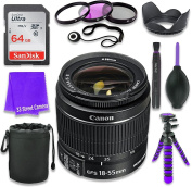 Canon EF-S 18-55mm f/3.5-5.6 IS II Lens (White Box, Bulk Packaging) for Canon DSLR Cameras & SanDisk 64GB Class 10 Memory Card + Complete Accessory Kit
