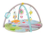 Taf Toys Baby Play Gym Thickly Padded with Colourful Lights and Sounds