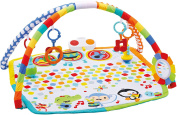 Fisher Price Babies Bandstand Play Gym