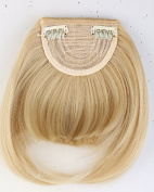 20cm One Piece Straight Bang Clip in on Bangs Fringe Hair Extension Extensions Fashion Womens Girls Choice Golden Mix Bleach Blonde