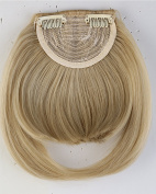 20cm One Piece Straight Bang Clip in on Bangs Fringe Hair Extension Extensions Fashion Womens Girls Choice Ash Blonde Mix Bleach Blonde