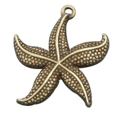 juliewang 20pcs Antiqued Bronze Tone Vintage Alloy Jewellery Starfish Charm Jewellery Finding .  24*23mm