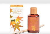 L'erbolario Ambraliquida Fragrance for Scented Wood Sticks 120ml Home Fragrance