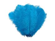 Ostrich Feathers   Ostrich Drab Wholesale Feathers (Bulk) - 0.2kg Turquoise, 23cm - 33cm
