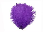 Ostrich Feathers   Ostrich Drab Wholesale Feathers (Bulk) - 0.2kg Purple, 23cm - 33cm