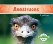 Avestruces (Ostriches ) (Especies Extraordinarias  [Spanish]