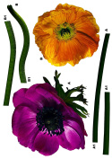 Brewster Komar FS17012 Peel & Stick Anemone European Wall Decals