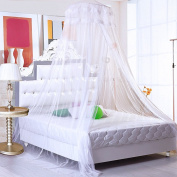 Romantic Princess Universal Ceiling Dome Mosquito Net Ultra Dense Double Lace Mosquito Netting Canopy 10.5 Metre Full Coverage Protection Fit Single/Double/King Size Bed for Holiday Travelling/Home, White