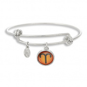 The Adjustable Band Bangle Bracelet featuring the colour pop Aries astrology sign