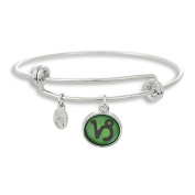 The Adjustable Band Bangle Bracelet featuring the colour pop Capricorn astrology sign