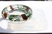 NEW!!Clear Silicone Bangle Bracelet moulds .Size 59mm,height 23mm. Free USA shipping!{3-3}
