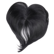 Ty.hermenlisa Clip in Hair Bang Synthetic Heat Resistant Fibre Fringe Hair Extensions Hairpieces,1 Pc,39g,Emma -Jet Black