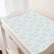 Carousel Designs Seafoam and Grey XO Changing Pad Cover
