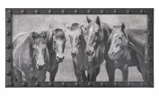 Meeting Of The Minds Horse Print