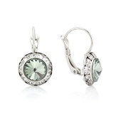 Jewelry11 Silver-Tone Crystal Earrings Gift For Her