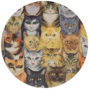 Thirstystone Drink Coaster Set, Cats, Cats, Cats