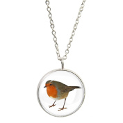 Robin Image Silver Plated Pendant and Necklace in Gift Box