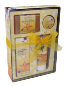 Wild Ferns Manuka Honey Gift Box