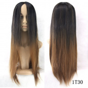 6 Colour Long Straight Hair Ombre Wig Heat Resistant Fibre Synthetic Cosplay Wigs