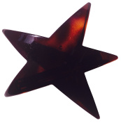 Parcelona French Star Large Shell Brown Celluloid Strong Grip Automatic Hair Clip Barrette