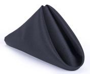 Displays2go Bulk Polyester Cloth Napkin, 17 Square Inch, Black, Set of 12