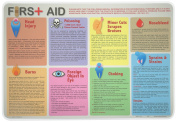 Painless Learning First Aid Placemat