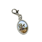 Graphics and More Joshua Tree National Park Mojave Desert Antiqued Bracelet Pendant Zipper Pull Oval Charm with Lobster Clasp