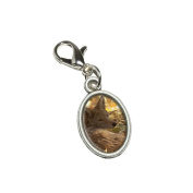 Graphics and More Coyote - Wild Dog Antiqued Bracelet Pendant Zipper Pull Oval Charm with Lobster Clasp