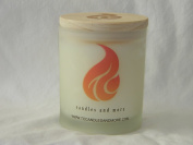 TC Candles & More Ocean Mist Candle Melts