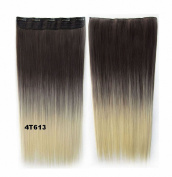 FESHFEN 60cm Long Straight Ombre Two Tone Synthetic Hair Extensions Clip in on Hairpieces 5 Clips One Piece 3/4 Full Head Cosplay Party Style for Women Xmas Gifts Medium Brown to White Bleach Blond