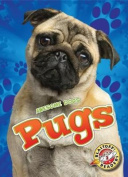Pugs (Awesome Dogs)