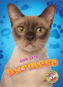 Burmese (Cool Cats)