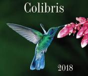 Colibris 2018 [FRE]