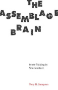 The Assemblage Brain