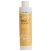 Shampoo Sage and Lemon Bio The Saponaria