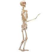 1.5m LIFESIZED POSABLE SKELETON HALLOWEEN PROP - LIFESIZE HUMAN SKELETON PROP WITH GLOWING RED EYES - PERFECT HALLOWEEN DECORATION AND GARDEN DECORATION - PACK OF 1