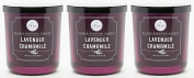Dw Home Lavender Chamomile Richly Scented Candle Small Single Wick Hand Poure...