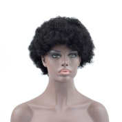 Dingli Hair Short Afro Kinky Curly Wigs Brazilian Human Hair Wigs for Black Women Natural Colour