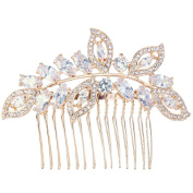 EVER FAITH Cubic Zirconia Austrian Crystal Leaf Wing Bridal Wedding Hair Side Comb Clear