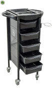 Salon Rolling Trolley Storage Cart Spa Equipment Beauty Storage Station