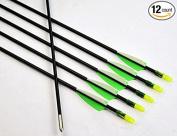 GPP Archery Beginner's First Arrows (80cm Fibreglass Target Archery Arrows) - 12 Pack