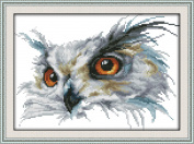 CaptainCrafts Hots Cross Stitch Kits Patterns Embroidery Kit - Owl