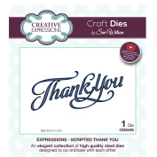 Craft Die CED5425 Sue Wilson Expressions Collection - Scripted Thank You